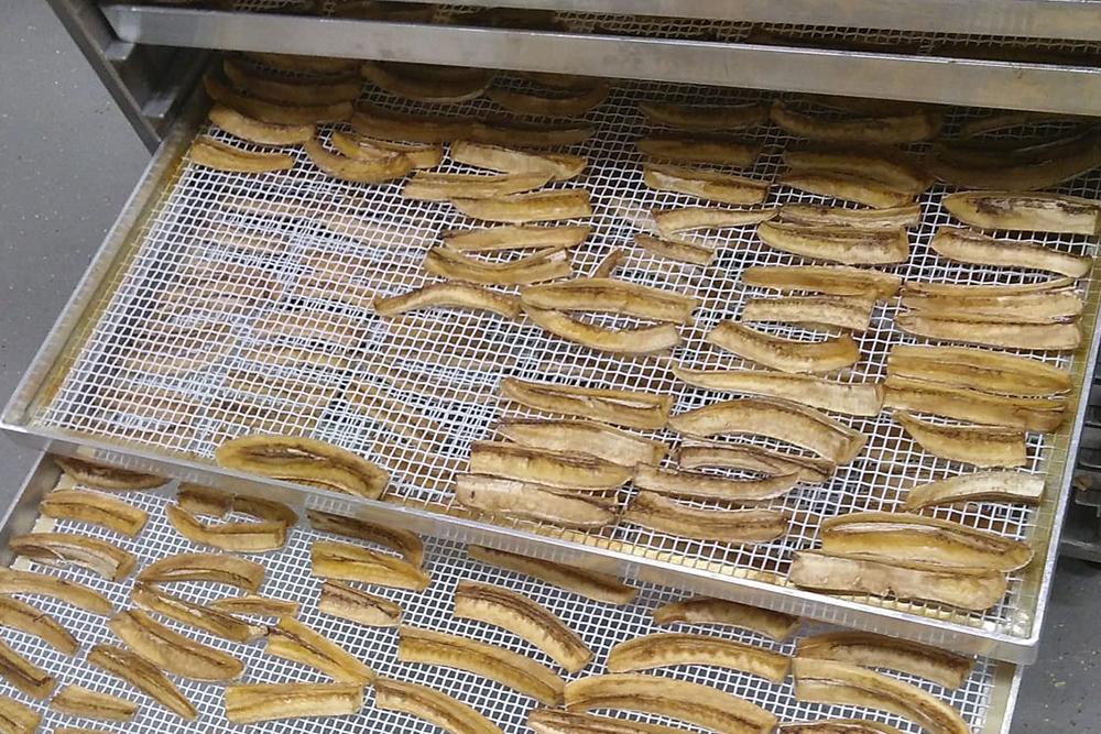 getrocknete Bananenstängeli auf den Trocknungsgittern