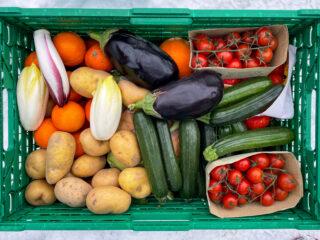 Lebensmittel entsorgen ist wirtschaftlicher, als sie zu spenden